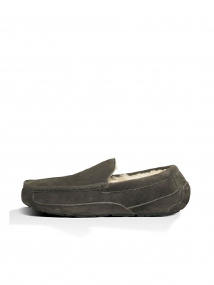 Ascot - Suede Instappers - Charcoal